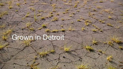 grown in detroit